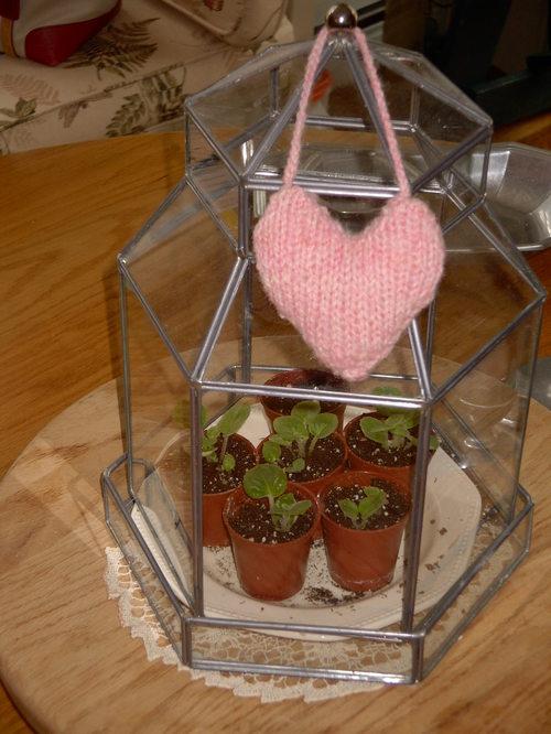 Knitted Heart Valentine
